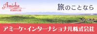 アミーケ・インターナショナル